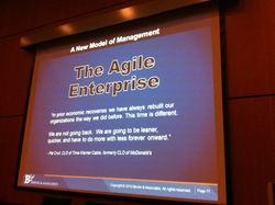 Bersin - the agile organisation